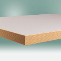 Werkbankplatte Kunststoff lichtgrau 40 mm