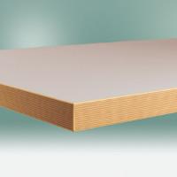 Werkbankplatte Linoleum nickelgrau 40 mm 1000 / 600
